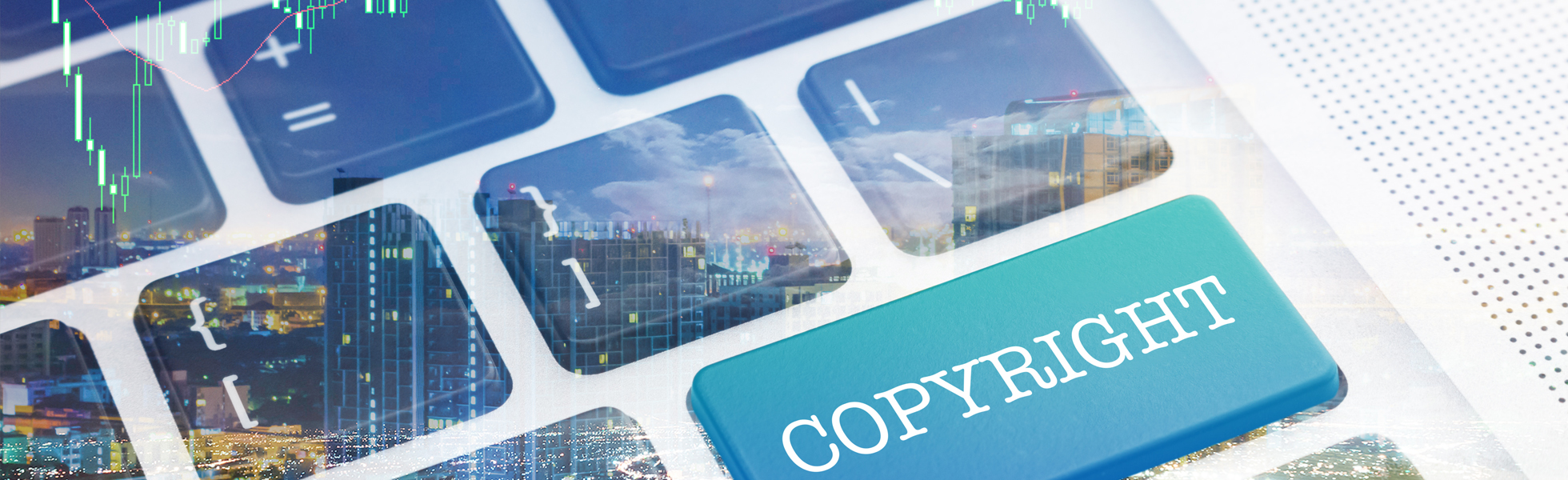 Enforce your Copyrights Domestically and Internationally
